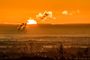 Sunrise over Pennines (ianbonnell) Tags: sunrise pennines billingehill sthelens merseyside
