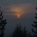 Misty sunrise - Torronsuo National Park