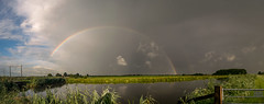 Rainbow in the Dutch Polder (mesocyclone70) Tags: rainbow colour color colors colours colorful colourful holland netherlands dutch sky weather skyscape landscape canal reflection reflections green storm thunderstorm chase stormchase stormchaser chaser thunder lightning field grass optics ngc