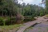 Amamoor Creek at Cedar Grove camping area (Allan Bowen) Tags: stateforest amamoor amamoorcreek queensland australia au