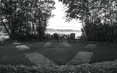 Front Row Seats to the Mist (Bill Smith1) Tags: believeinfilm bellalake billsmithsphotography billiebearresort hc110b heyfsc muskoka olympusom2n rolleisuperpan200 zuikomc50f18lens