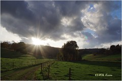 Un paseo por el campo (mariadoloresacero) Tags: rayons rayos sun soleil sol country tree clouds nuages nubes arbre árbol campagne campo ilca68 sony