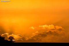 Sahara sand sunset as Ophelia approaches (Nigel Blake, 15 MILLION views! Many thanks!) Tags: sahara sand sun sunset storm hurricane ophelia sky weird eerie light orange brown spooky weather forecast meteorology cloud solar event