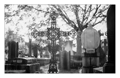 (floguill) Tags: leica iiig canon serenar 5018 rpx25 lc29 rollei