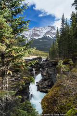 Dark Sky Festival Jasper 2017 (LordTez) Tags: sony alpha a772 pokorra jasper national park canada alberta carl zeiss cz2470 f4