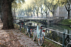 bike@Kö, Düsseldorf 6 (Amselchen) Tags: bicycle canal water moat city kö düsseldorf germany light reflection bokeh blur dof depthoffield fujifilm fujifilmxseries fujinon xt2 fujifilmxt2 xf35mmf14r