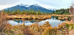 Vermillion Lakes, Banff National park, Alberta - ICE(5)2267-82 (photos by Bob V) Tags: mountains rockies rockymountains canadianrockies banff banffpark banffnationalpark alberta albertacanada banffalberta banffalbertacanada reflection reflectiononwater lake mountainlake panorama mountainpanorama vermillionlakes