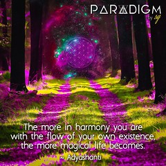 Be in harmony and watch the magic unfold 🔮🔮🔮 (Paradigm By SG) Tags: woods universe digitalart harmony love knowledge wisdom spiritual