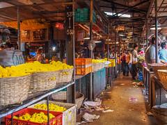 LR-020 (hunbille) Tags: india mumbai birgittemumbai32015lr dadar phool galli phoolgalli flower market bazaar bombay