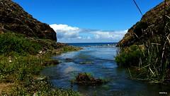 A chegar ao Atlântico   (explore 25-10-2017) (antoninodias13) Tags: riacho mar oceanoatlântico azul sul águadoce águasalgada maresia rumor arribas ceu nuvens costavicentina faro algarve portugal picmonkey litoral pemhasco