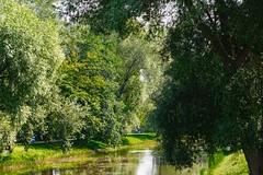 City park (Jurek.P) Tags: warsaw warszawa poland polska kępapotocka park city citypark trees water green jurekp sonya77