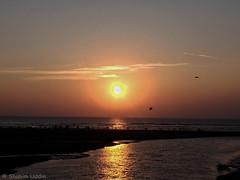 Photo - 14 (Shahim Uddin Saba) Tags: shahimuddinsaba coxs bazar bangladesh beach