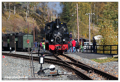 Preßnitztalbahn - 2017-41 (olherfoto) Tags: bahn eisenbahn schmalspurbahn museumsbahn kleinbahn presnitztalbahn vasut kisvasut erzgebirge dampf dampflok dampfzug rail railroad railway narrowgauge steam train steamtrain