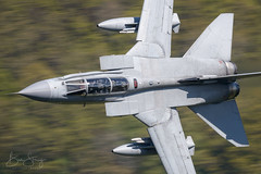 '25-wing' (benstaceyphotography) Tags: 12bsqn royalairforce raf panavia tornado gr4 squadron marham lowfly low flying military aviation training flight tonka panning motion blur fast jet uk lfa7