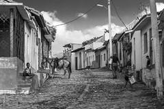 Cuba-4146 (helenea-78) Tags: streetphotography street streetpassionaward auteurcuba cuba pays photoderue trinidad scenederue cheval