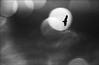 F_47A1380-BW-2-Canon 5DIII-Tamron 28-300mm-May Lee 廖藹淳 (May-margy) Tags: 旅 maymargy bw 黑白 飛鳥 機內容附曝光 雲彩 雨珠 光點 街拍 streetviewphotography 天馬行空鏡頭的異想世界 mylensandmyimagination 線條造型與光影 linesformsandlightandshadow 心象意象與影像 naturalcoincidencethrumylens 瀨戶內海 setoinlandsea japan 日本 沙巴 神山 馬來西亞 f47a1380bw2 bird incameradoubleexposure clouds raindrops window 窗戶 sabah malaysia canon5diii tamron28300mm maylee廖藹淳 mountkinabalu 心象攝影 心象