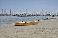 West Beach, Santa Barbara, CA (Zara Calista) Tags: west beach marina santa barbara ca yellow boats