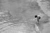 Playing on the Beach (spaetzle) Tags: italianriviera cinqueterre beach water italy fujifilmxt1 blackandwhite corniglia