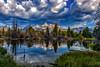 Even Beavers Love The Grand Teton Range (jetguy1) Tags: grandtetons reflection landscape wyoming grandtetonnationalpark beaverdam