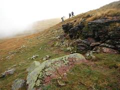 Stara Planina 130 (jecadim) Tags: staraplanina hiking trekking serbia srbija mountain fog foggy nature clouds autumn grassland pasture