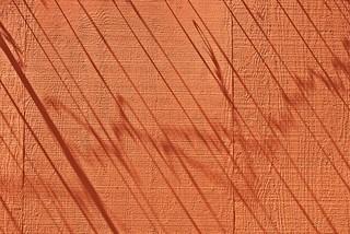 Razor Wire Shadows on Wall 3084 A