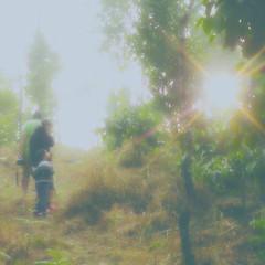 Sparkling Sun :-D Quest . 寻求 . Búsqueda . खोज . Busca (Gopi Sutar) Tags: whereisthesun beautifullife people sparklingsun quest 寻求 búsqueda खोज busca story 故事 cuento कहानी conto fiction 小说 ficción कल्पना ficção sparkling sun siblings papa father run scared hill escape ills rage reach top breathless plonkdown wonder creepy cottage warm sunlight burst foggy misty fog mist sky delight triumph pride brimmingover trio upontheirfeet poembyaditi outdoor green plant grey autumn day morning daylight