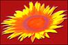 (Cliff Michaels) Tags: photoshop pse9 flower plant florl nikon niond50 sunflower