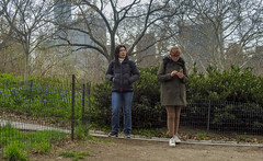 62399-New-York (xiquinhosilva) Tags: 2016 centralpark manhattan nyc newyork newyorkcity park theramble therambleandthelake usa unitedstates us