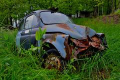 fiat 500F (riccardo nassisi) Tags: auto car wreck wrecked rusty rust rottame relitto ruggine ruins scrap scrapyard abandoned abbandonata montechino piacenza fiat 500