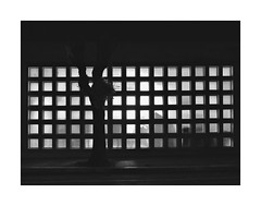 Nocturnal (eduardo.mazzeo) Tags: monocromos nocturnal night eduardomazzeo grid facade