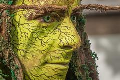 2017WLS-64 (stevefge) Tags: 2017 arnhem livingstatues worldlivingstatues candid people performers schmink green woody street men nederland netherlands nl nederlandvandaag gelderland eyes