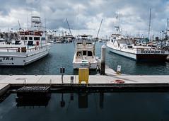 Oceanside Harbor