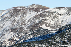 2017.10.10 Diablak śniegiem malowany (Meteor Foto) Tags: meteorfoto gorymojeukochanegory góry gory mountain mountains babiagóra babiagora diablak bgpn zima wiosna śnieg snieg chmury beskidy beskidżywiecki beskidzywiecki