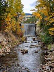 Day 286: Waterfall in fall