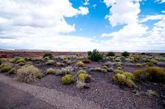 543-14-DS4_3741 (vgwells) Tags: sedona arizona grand canyon national park scottsdale montezuma castle jerome verde railroad sunset crater wupatki