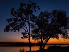 Sunset riverside (Robert R Grove 2) Tags: sunset riverside trees river robertrgrove