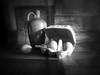 Still Life in Bl & Wh (Smiffy'37) Tags: 7dwf blackwhite stilllife objects vignette fineart