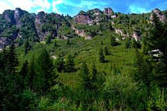 "On the way to ""Malyovitca"" peak, Rila mountain, Bulgaria (Stanimir Dimitrov - stambeto) Tags: rila nature forest rocks rock green tree blue sky tag hike hiking trail"
