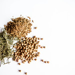 Spices on white background thumbnail