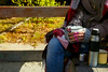 Girl with a cup of hot herbal tea (lyule4ik) Tags: autumn girl nature woman thermos bench plaid relax outdoor drink tea hand park water beautiful brownhair coffee cold cute fall foliage hold jeans knit picnic portrait seasonal shoe shore sit sweater warming whiteskin active background casual closeup cup female forest grass harmony holding jacket