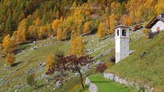 Rintocchi d'autunno