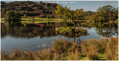 Rydal Water (Steven Peachey) Tags: trees autumn landscape thelakedistrict cumbria water 5dmarkiv canon5dmarkiv lee09gnd graduatedndfilter stevenpeachey lightroom sky ef1740mmf4l rydalwater explored explore