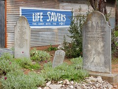 Too Late To Save These Lives (mikecogh) Tags: tailembend oldtailemtown heritage museum pioneervillage lifesavers advertising irony cemetery gravestones humour humor