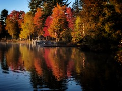 October on the lake--Explored (yooperann) Tags: red yellow maple trees fall colors reflected bass lake marquette county upper peninsula michigan autumn pontoon boat dawn
