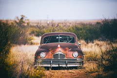 We Used to Love All Day and Drive All Night (Thomas Hawk) Tags: america newmexico route66 usa unitedstates unitedstatesofamerica abandoned auto automobile car junkyard fav10 fav25 fav50 fav100