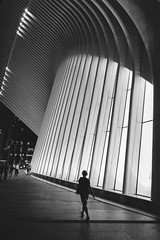 (Views From Lisa) Tags: nikon d7100 manhattan newyork unitedstates september fall 2017 viewsfromlisa blackandwhite oculus architecture