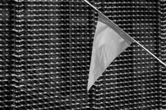 ... BANDERÍN ... (Lanpernas 3.0) Tags: banderín gallardete grimpola monocromo banderola fiesta verano gris summer tabakalera triángulo cataviento