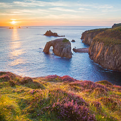 Sunset at Enys Dodnan (Michael Sowerby Photography) Tags: 2017 august cornwall evening seascape sunset water coast landscape sea sundown landsend lands end dusk golden light heather colour cliffs enys dodnan sun classic photography canon 5dsr 1635mm england purple rocks grass sky rock