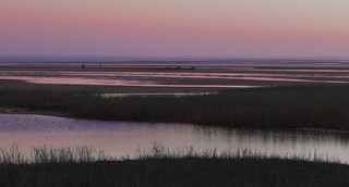 Sunrise on the Shellfish Grant