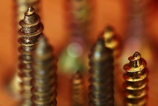Spiral of Spirals